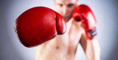 gants de boxe avis