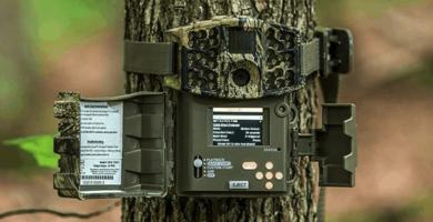 meilleure trail camera